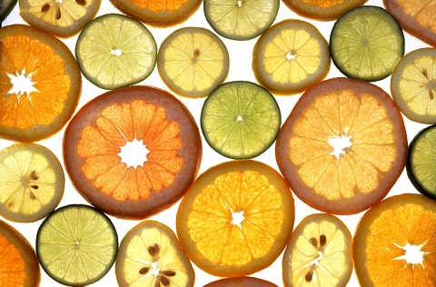 Citrus Fruit Slices US Agricultural Service